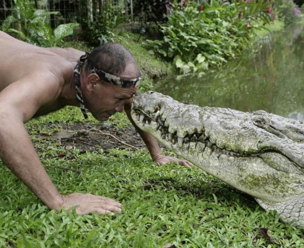 crocodile-pet_5
