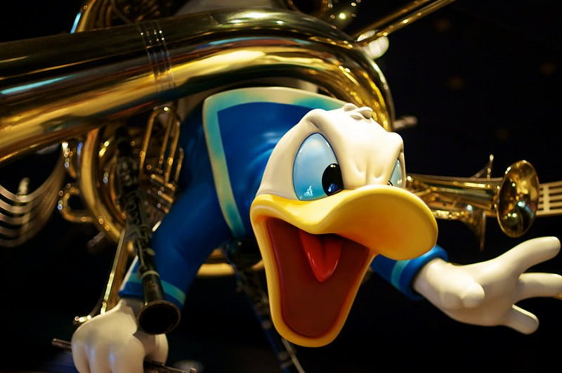 Photo:Starring Donald Duck By:Bob Owen